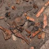 5. Concentració de fauna i cerámica a la Cova de les Pixarelles. Imatge: Ramon Álvarez.