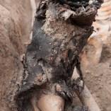 4. Calçat que duia un dels soldats recuperats a Pernafeites. Fotografia: Iltirta Arqueologia