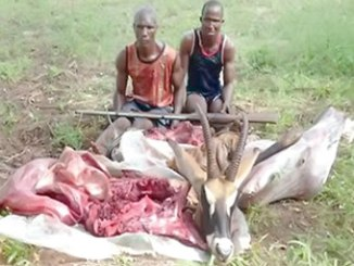 antelope-hunters