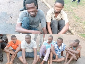 Omotayo Tunde (left) and Salawu Tunji. (Top)  Five other suspects arrested in connection with Tunde and Tunji's case. (down)