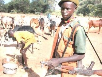 fulani-herdsmen-or-boko-haram
