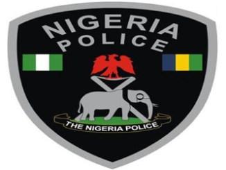 nigeria-police-new