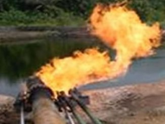 pipeline-tribuneonlineng
