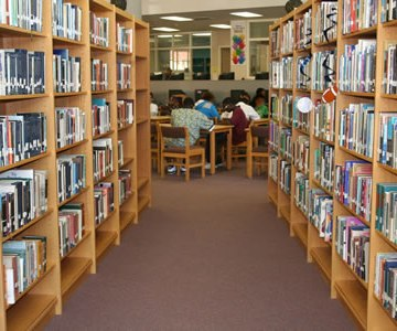 Monarch advises governments to overhaul libraries