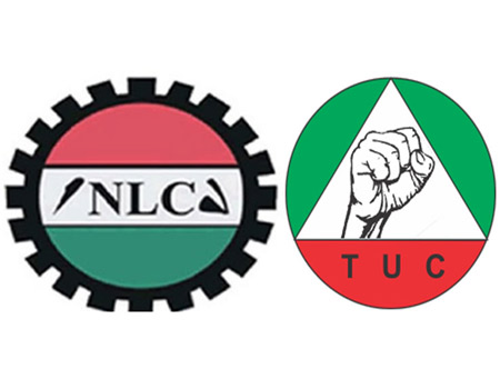nlc-tuc