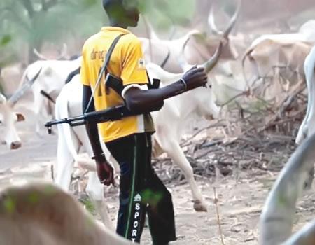 Suspected herdsmen kill four , Four killed, Kogi Miyetti Allah chairman, Over 50 armed herdsmen, Suspected herdsmen machete , Miyetti Allah tells members, Suspected herdsmen hack two, Herdsmen storm forest reserve, Herdsmen attacks, herdsmen, Suspected herdsmen