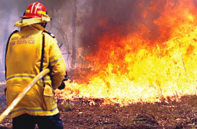 bushfire, 4 feared dead, Fire outbreak in 2020, fire in niger