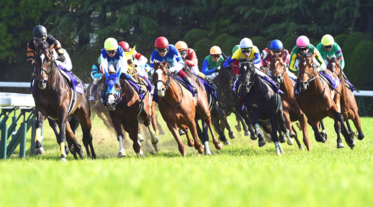 A Look at Horse Racing Events and What Will Change