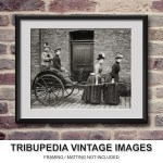 Antique 1897 Amusing Photo Victorian Women with Battlesden Horse Carriage Funny