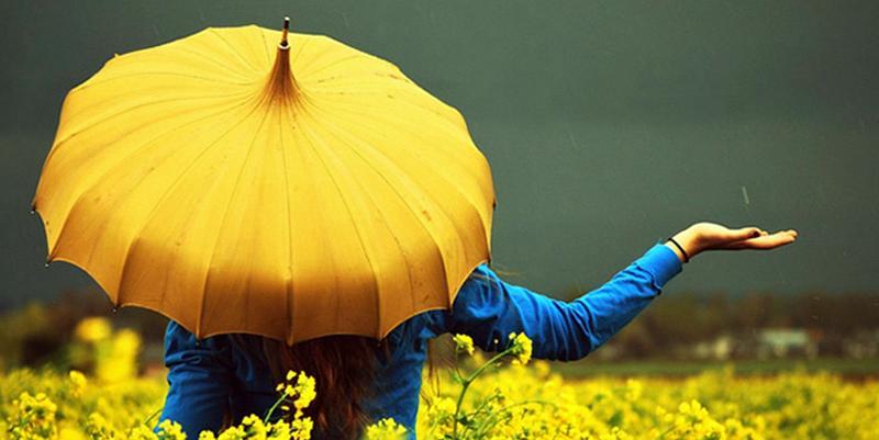 yellow-umbrella-122079