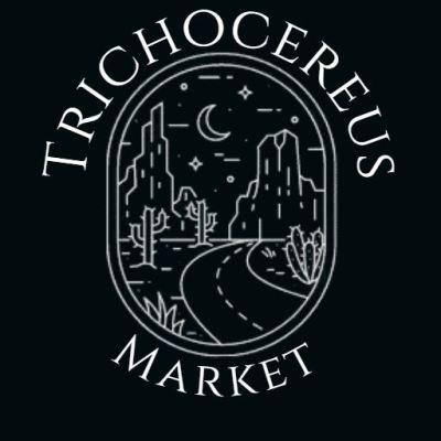Trichocereus Market T-Shirt