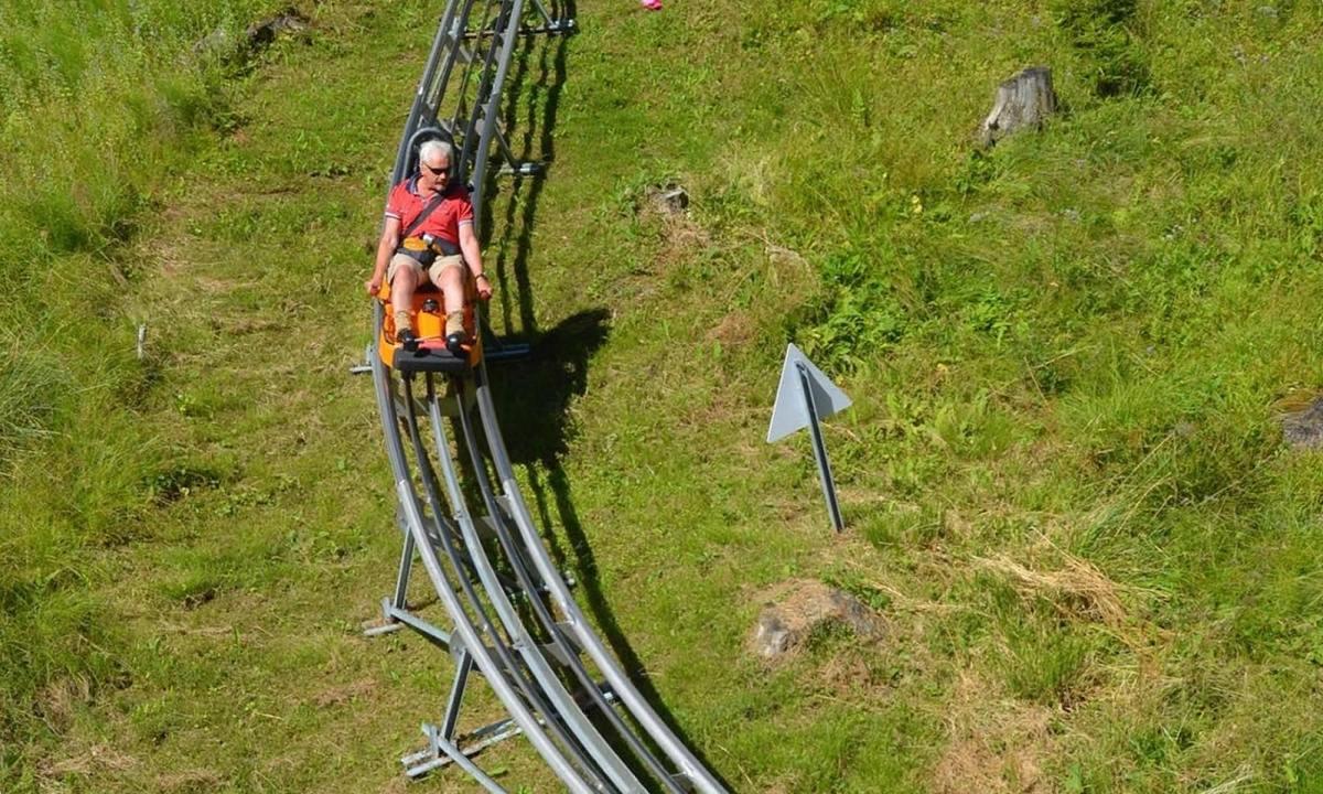 Curvy Exhilaration Riding the Alpine Coaster in