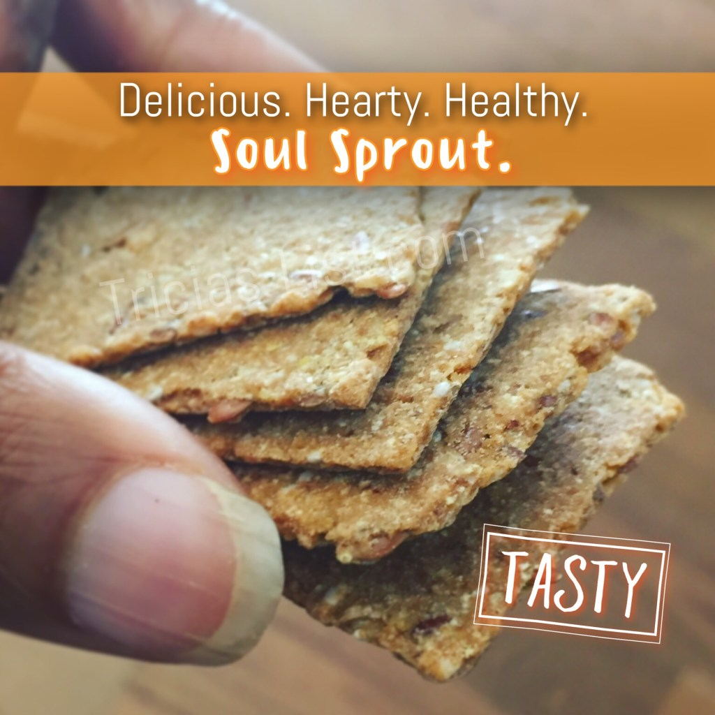 Want Healthy And Tasty Food Together? Try Soul Sprout