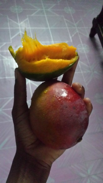 Mangoes are my #1 craving