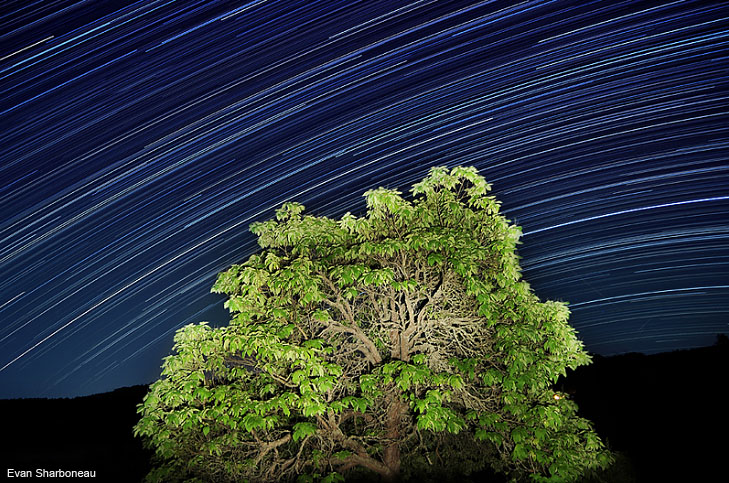 Star Trails Long Exposure Photography
