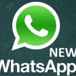 Whatsapp Apk 2018 Download for Android, Windows, iPhone And PC