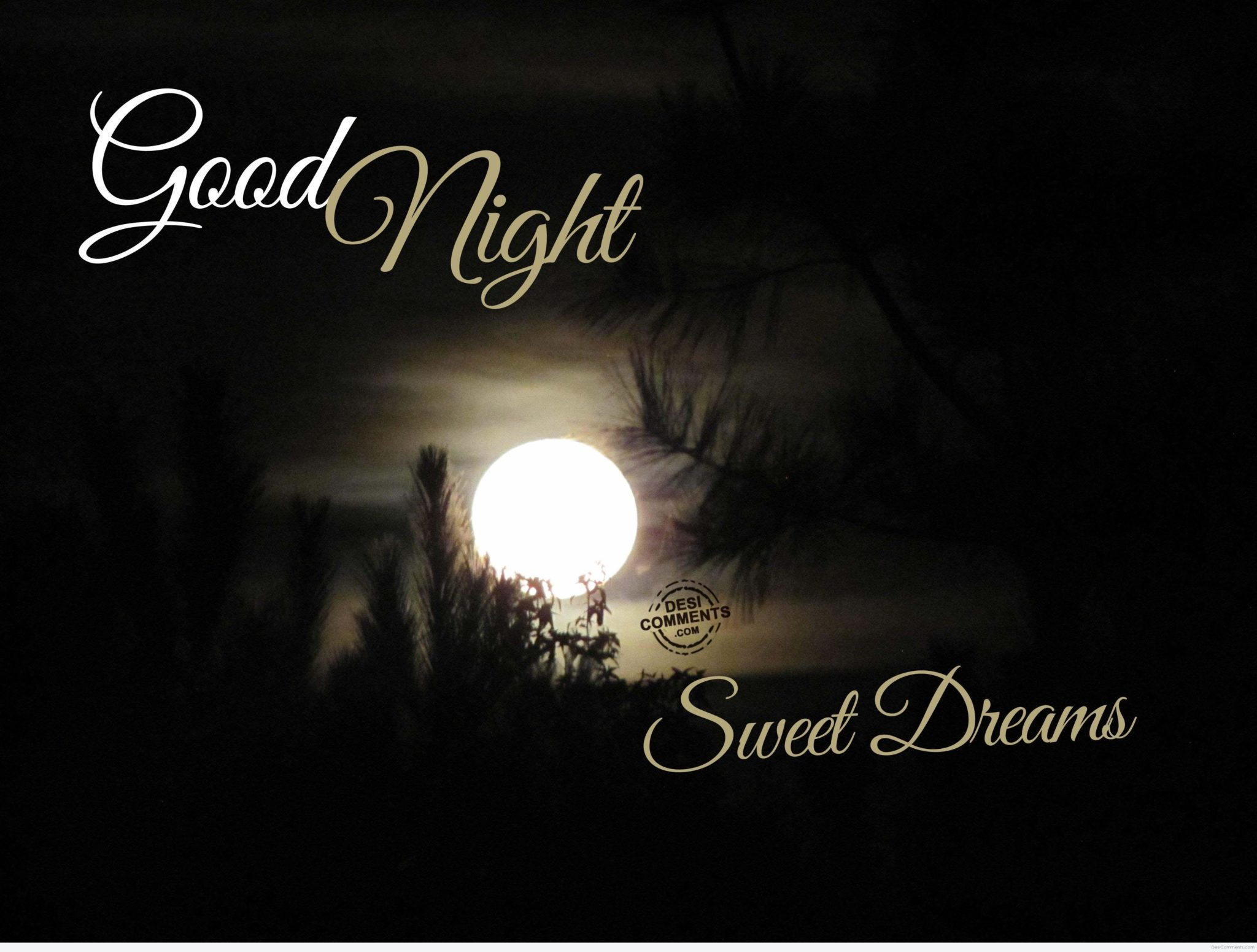 Good Night And Sweet Dreams Quotes Gifs And Images New In 2019