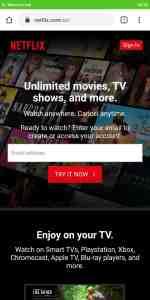 Free Netflix Subscription