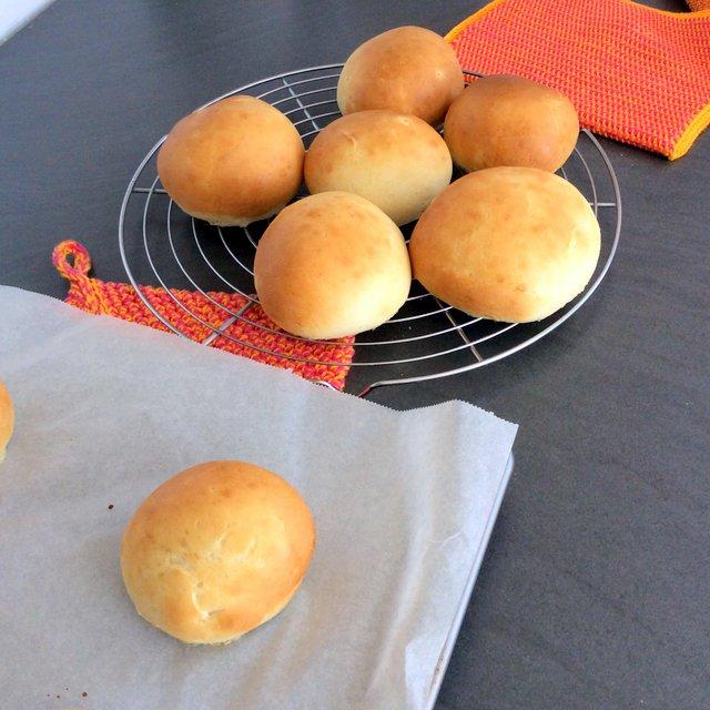petits pains dorés hamburger