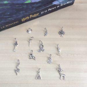 Lot de 12 anneaux marqueurs Harry Potter