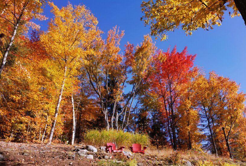 automne indien québec
