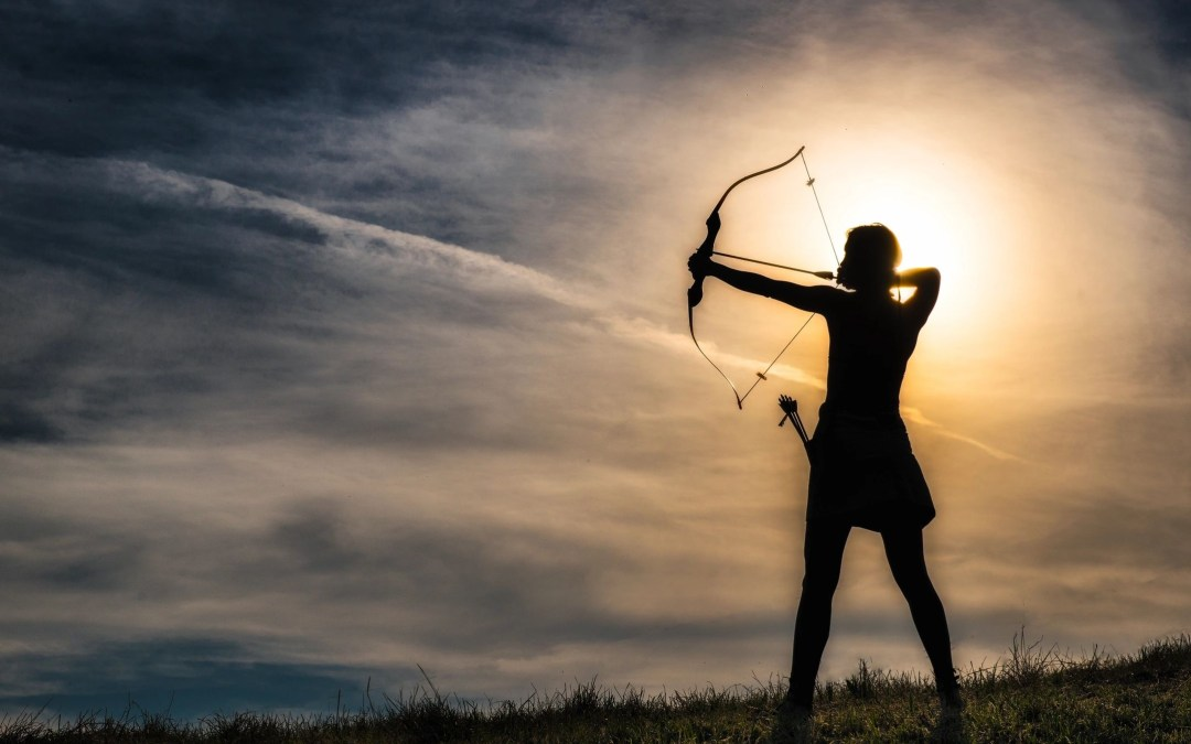 Training the Archer:  Accelerating Changemaking through Testing Assumptions Report