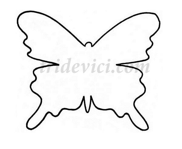 шаблон-бабочки