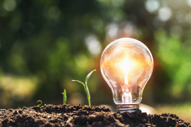 light-bulb-soil-young-plant-growing_34152-1273