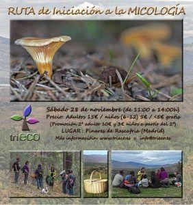 triECO-Cartel Micología_28nov_def gr