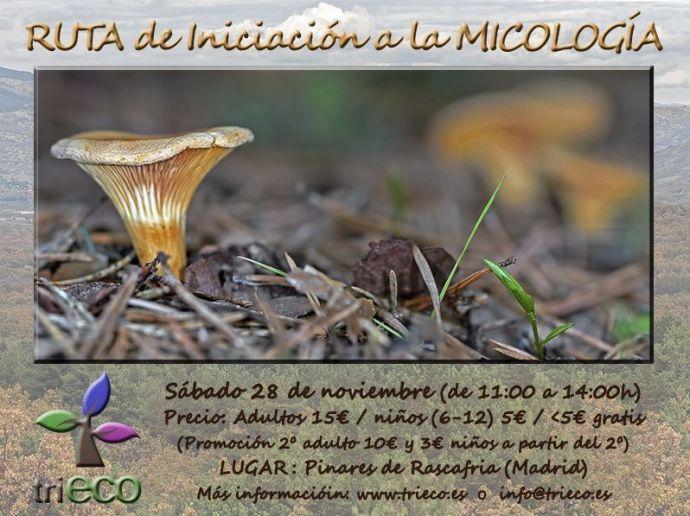 triECO-Cartel Micología_28nov_def