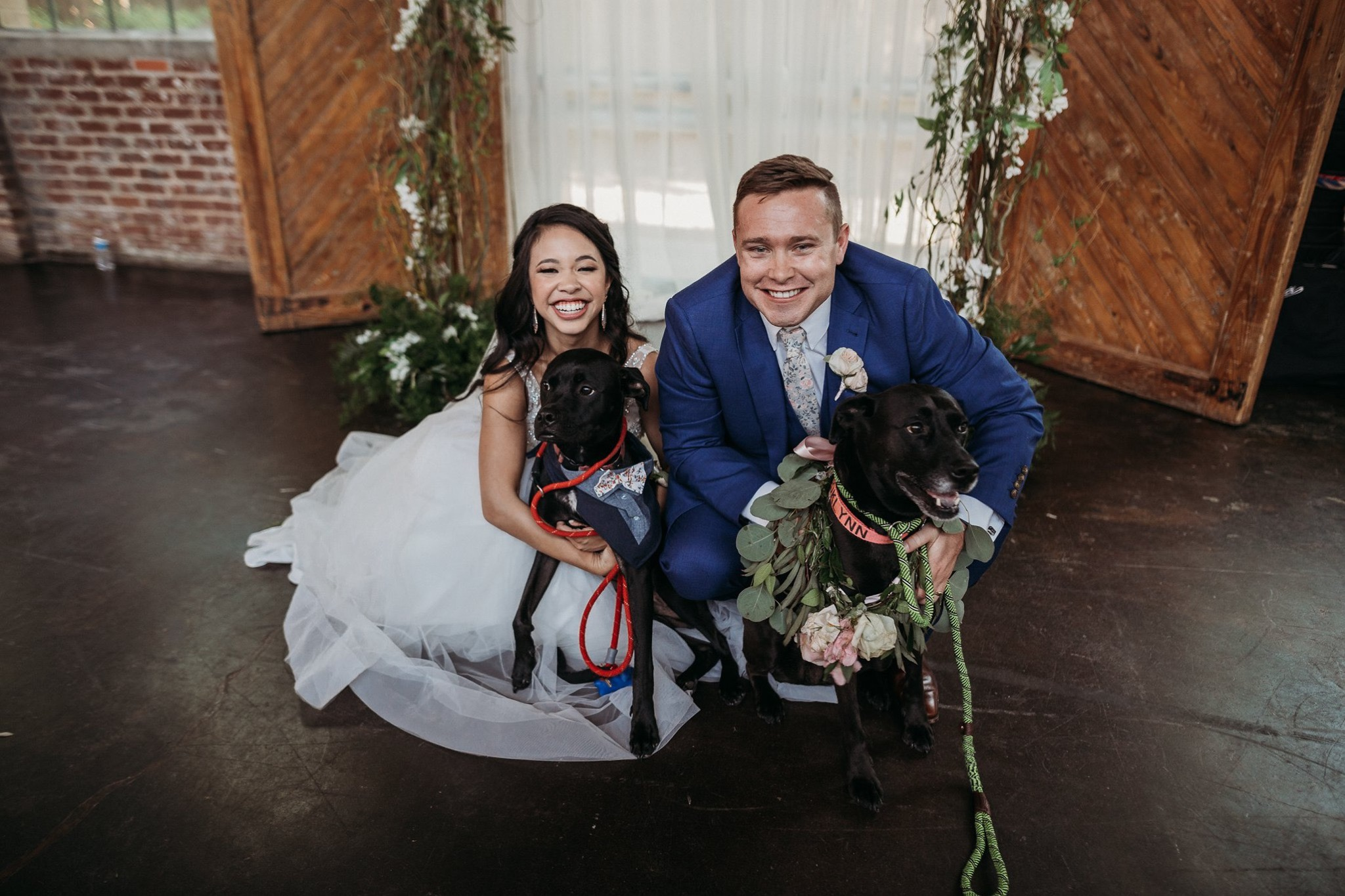 Our dogs were in our wedding