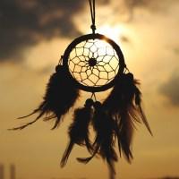 [Exclusive] Shaman (Pháp sư) giải thích về cách chất thức thần ayahuasca tạo điều kiện cho sự thức tỉnh tâm linh