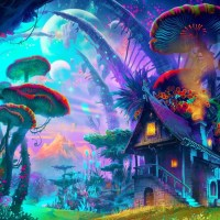 Psychedelics, Thức Thần, Cần Sa, Thứ High và Ảo Giác