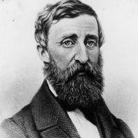 [THĐP Translation] 26 bài học đỉnh cao từ đại thi hào Mỹ Henry Thoreau