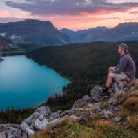 Làm thế nào để tĩnh lặng tâm trí?