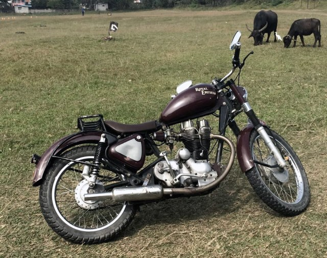 Royal Enfield #21, buffalo
