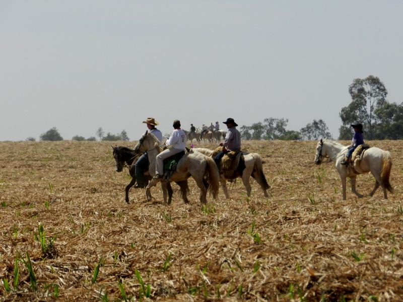 Cavalgadas no Paraná para 2017