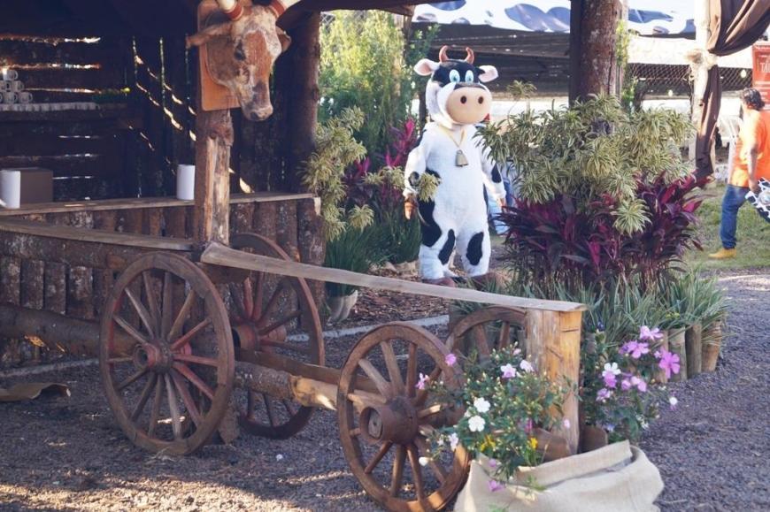 Vaca Atolada - Boa Esperança - Foto: Município de Boa Esperança (Facebook/Divulgação)
