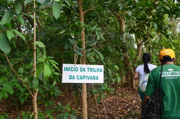Caminhada Natureza - Engenheiro Beltrão
