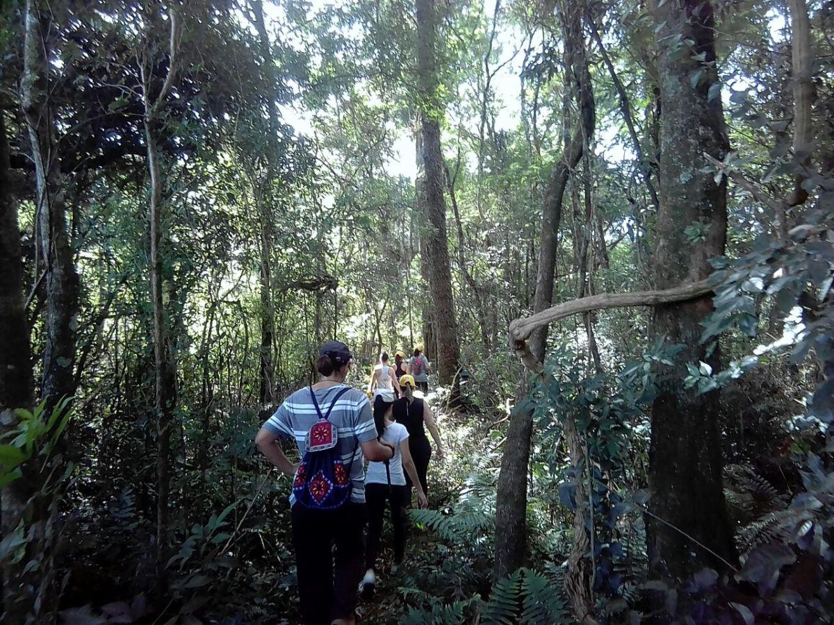 Realizada 3ª Caminhada na Natureza de Roncador