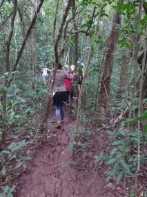 Acqua Trekking de Peabiru (14)