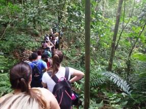 Acqua Trekking de Peabiru (6)