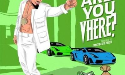 Are You Vhere mp3 Download by Skiibii