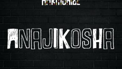 Download mp3: Harmonize – Anajikosha