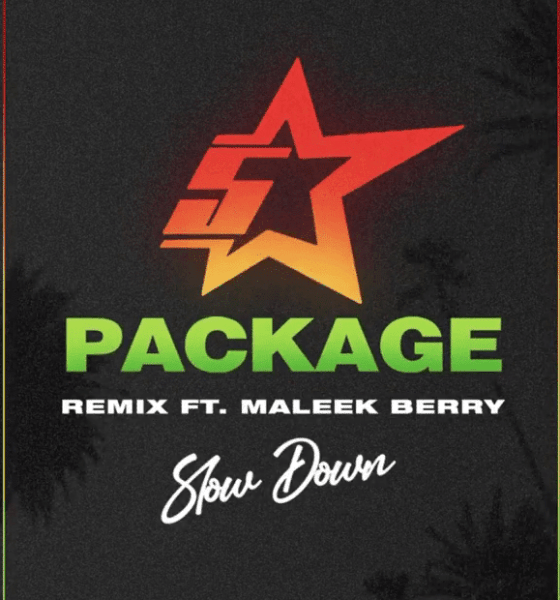 King Promise – Slow Down (Remix) ft Maleek Berry Mp3 Download