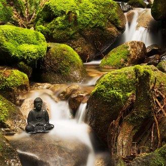 Buddha And Stream