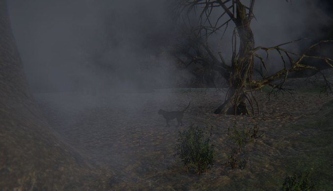 A Black Cat Roams the Dark Forest