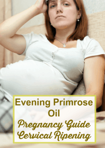 Evening Primrose Oil in Pregnancy For Dilation & Cervical Ripening