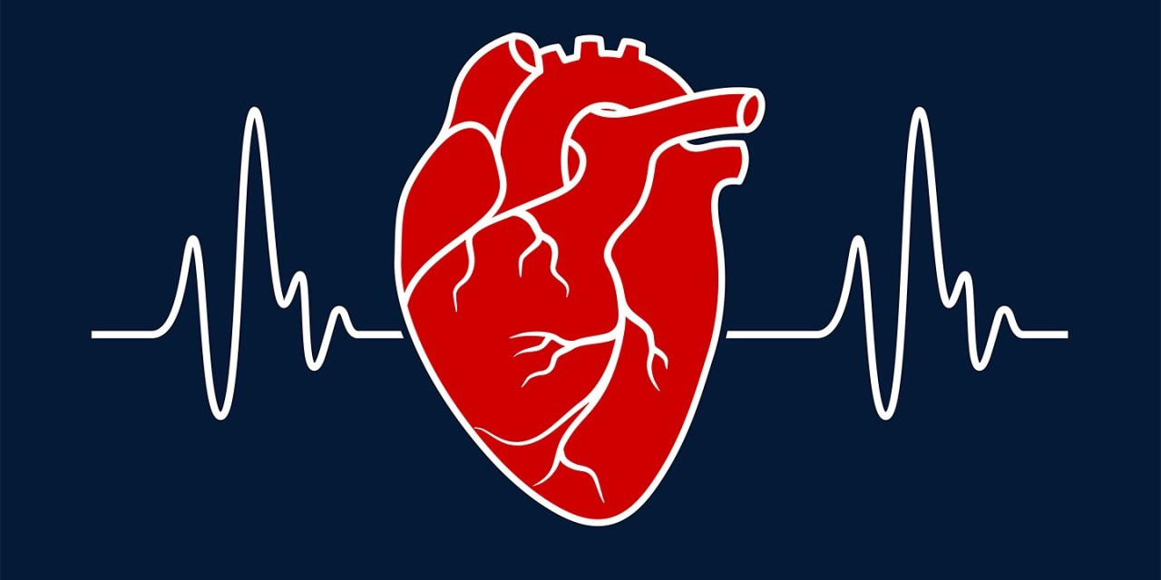 ¿Que indicador nos puede dar nuestra frecuencia cardiaca en reposo?