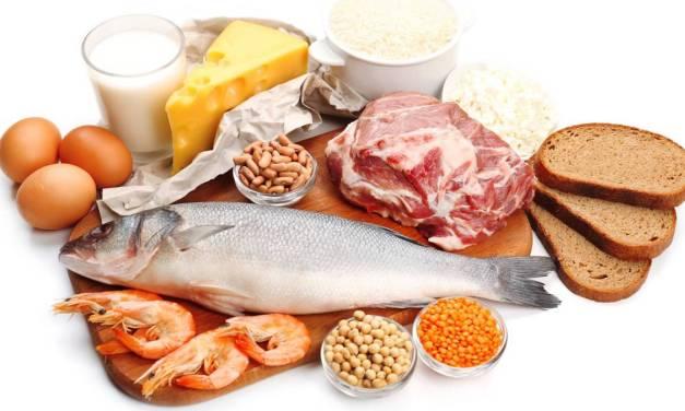 Todo lo que necesitas saber sobre las proteínas.